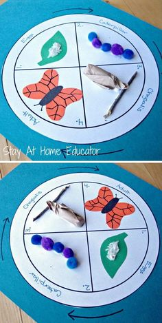 life cycle of a butterfly craft - Stay At Home Educator These bug and butterflies theme activities are perfect for preschool and kindergarten. These spring activities will keep your kids active and learning. Preschool Science, Preschool Learning, Preschool Crafts, Crafts For Kids, Fun Crafts, Paper Crafts, Kids Educational Crafts, Science Area, Nature Crafts