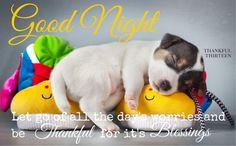 Goodnight goodnight good night goodnight quotes goodnight quote goodnite