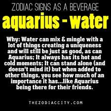 Aquarius  January 21 to February 19