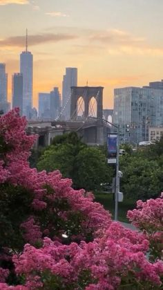 City Vibe, Manhattan Nyc, New York Travel, Seattle Skyline, New York City, Brooklyn, Money Stacks, Fashion Music, Tours