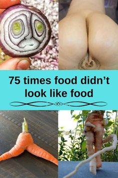 75 times food didn't look like food Stages Of Love, Simple Winter Outfits, Smoke Bomb Photography, Best Diet Pills, Cool Gadgets To Buy, Get Gift Cards, Social Media Impact, Divorce Lawyers, How To Get Followers