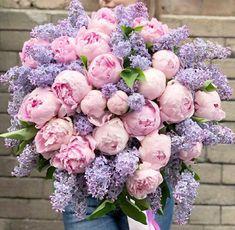 Wholesale Flowers Near Me   Bulk Flowers Luxury Flowers, Fresh Flowers, Beautiful Flowers, Beautiful Flower Arrangements, Floral Arrangements, Peony Arrangement, Peonies Bouquet, Bouquets, Flower Aesthetic