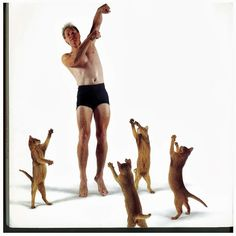 Dancing with Cats | Awful Library Books