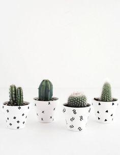 25 maneiras DIY simples para personalizar e pintar vasos de terracota Succulent Pots, Planting Succulents, Diy Simple, Easy Diy, Clever Diy, Cactus Vert, Cactus Cactus, Blog Deco, Painted Pots