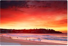 Bondi Red - By the insanely talented Eugene Tan @aquabumps