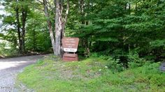 Come build the home of your dreams on this secluded wooded lot in a quiet, low dues community. Close to town, 84, and the lake yet far enough away for peace and quiet. Seller is motivated and willing to negotiate.