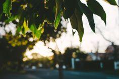 {Golden hour.}