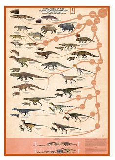 'Tetrapods of the Ischigualasto Formation' Poster by SerpenIllus Real Dinosaur, Dinosaur Art, Prehistoric Dinosaurs, Prehistoric Creatures, Octopus Vulgaris, Dinosaur Sketch, Reptiles, Natural Science Museum, Feathered Dinosaurs