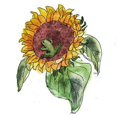 Sunflower and Frog as a tattoo
