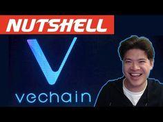 Vechain (VEN) in a Nutshell