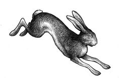 Like sketch style and motion of hare Rabbit Drawing, Rabbit Art, Running Drawing, Hare Illustration, Rabbit Tattoos, Embroidery Designs, Linocut Prints, Animal Tattoos, Ink Art