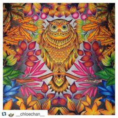 Instagram media desenhoscolorir - Wow! Que demais essa coruja! #Repost…