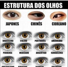 Dos brasileiros é tudo a mesma bosta