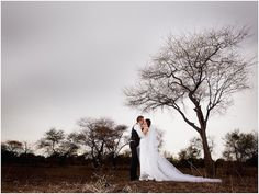 Wedding+photography+portfolio+by+Louise+Meyer+Photographers.+This+exquisite+wedding+took+place+at+Palala+Boutique+Game+Lodge,+Limpopo,+South+Africa