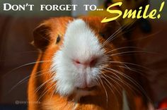 Dont forget to smile.....