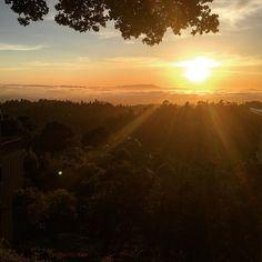 @karlthefog providing some  views tonight at sunset!  Bye Weekend!  #Oakland #oaklandhills #montclair #sunset #california #memorialday