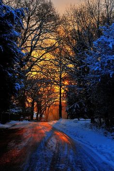 Snowy London sunrise, Epping Forest,UK Been here it's beautiful! Beautiful World, Beautiful Places, Beautiful Pictures, Nature Landscape, Winter Scenery, Winter Sunset, All Nature, Amazing Nature, Adventure Travel