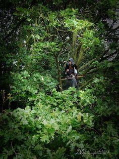 in the oaktree  Ranger's apprentice.. more of this ranger's apprentice http://www.pinterest.com/DBfotografie/rangers-apprentice-grijze-jager/