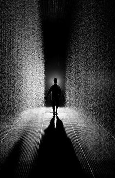 The Rain Room at the MoMA. Well, it's at MoMA! Deco New York, Moma Nyc, Arte Black, Instalation Art, New York Art, Monochrom, Museum Exhibition, Museum Of Modern Art, Summer Art