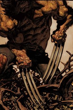 18 and over only, NSFW Gay Male Nudity!!, artverso:   Simon Bisley - Wolverine