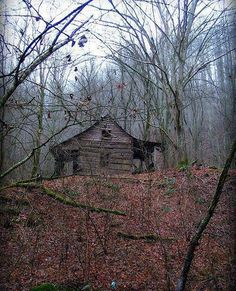 "Ruinen sixpenceee: "" Abandoned cabin in the woods of Virginia. Old Abandoned Houses, Abandoned Mansions, Abandoned Buildings, Abandoned Places, Old Cabins, Cabins And Cottages, Cabin In The Woods, Lost In The Woods, Little Cabin"