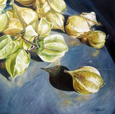 Susan Outlaw (b.1973) —  Physalis Pruinosa on Pewter Plate, 2010  (700×698)