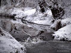 Zdjęcie w albumie 15-01-31 - Zdjęcia Google