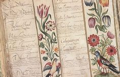 Flemish Flower Manuscript from 1630 was originally produced for the De La Broye family Oldies But Goodies, Vibrant, Bloom, Calligraphy, Drawings, Instagram Posts, Flowers, Inspiration, Lettering
