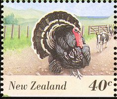 Wild Turkey stamps - mainly images - gallery format