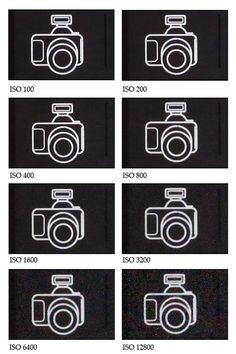 voorbeeld van verschillende ISO waarden Fotografie Hacks, Camera Hacks, Camera Tips, Creative Photography, Photography Ideas, Photoshop, Inspiration, Site, Model