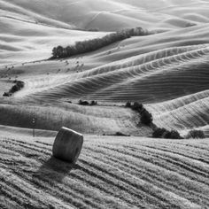Summer in Tuscany - Limited Edition 1 of 50