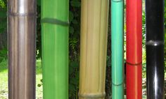 Choose from natural to artificial bamboo poles, we have a large variety of lengths and diameters.