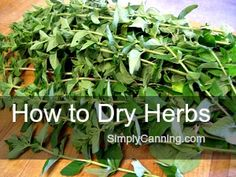 Learning how to dry herbs is fun, easy, and economical. Do you grow and cook with your own fresh kitchen herbs? Drying is a great way to preserve them