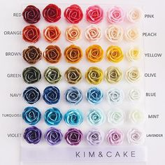 kimncake kimncake used our Icing Gel colors to make this awesome rainbow of buttercream flowers! Link in bio to get our icing colors! · · · All you need is just 10 Wilton colors to make these via kimncake kimncake Korean Buttercream Flower, Buttercream Flowers, Buttercream Frosting, Frosting Colors, Frosting Tips, Wilton Cake Decorating, Cookie Decorating, Wilton Cakes, Cupcake Cakes