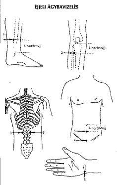 Akupunktura Ayurveda, Health Fitness, Math, Anatomy, Math Resources, Fitness, Health And Fitness, Mathematics