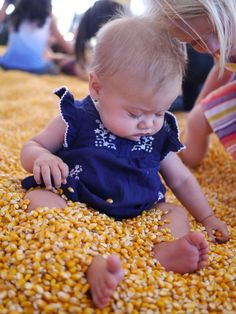 Corn instead of sand!