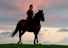 Far From The Madding Crowd review - Boris Starling
