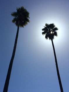 Sunny California, USA