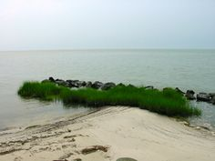8 ACRES ON OVER 600 FT. OF BEACH FRONT! $495,000. IS A DEAL FOR THIS BEAUTIFUL PARCEL IN A PRIVATE COMMUNITY.