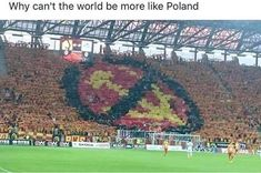r/The_Donald - Love Ya, Poland! Political Pictures, Political Memes, Funny Images, Best Funny Pictures, Bad Humor, America Memes, Great Memes, Meanwhile In, Jokes