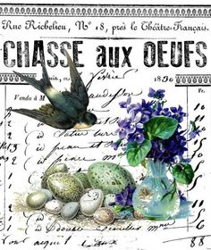 chasse aux oeufs 2