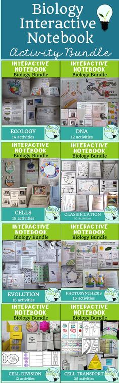 Biology interactive notebook bundle of over 120 activities among 8 topics. Great for high school or middle school life science. Many activities to chose from over a variety of topics (classification, cell division, ecology, DNA, cells, cell transport, photosynthesis, evolution).