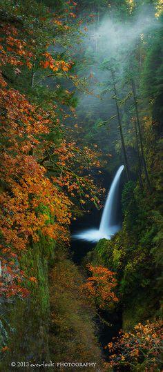 Metlako chasm | Autumn,Metlako Falls, Eagle Creek Hike, Oregon by Dylan Toh