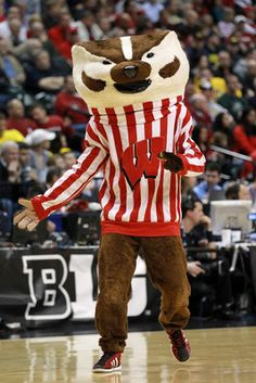 Wisconsin Badgers - My college - University of Wisconsin, Madison