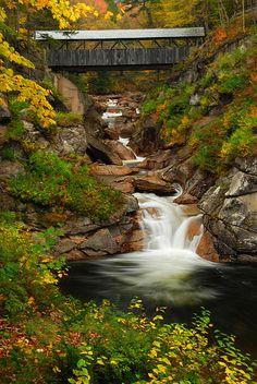 Sentinel Pine Bridge @Jacob McPherson McPherson Renquist Pillai Hampshire