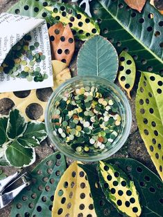 Eco-friendly friends listen up! Green Wedding Shoes is sharing 7 sustainable alternatives to confetti at your wedding. Eco-friendly friends listen up! Green Wedding Shoes is sharing 7 sustainable alternatives to confetti at your wedding. Confetti Bags, Diy Confetti, Wedding Confetti, Biodegradable Confetti, Biodegradable Products, Gifts For Wedding Party, Our Wedding, Eco Wedding Ideas, Summer Wedding
