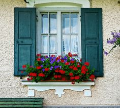 Using window boxes to spruce up your home's interior and exterior ...
