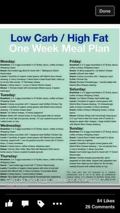 INFOGRAPHIC: Low Carb, high fat meal plan.