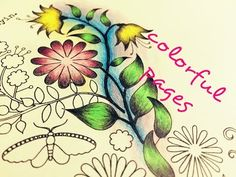 I Used Faber Castell 24 Classic Artist Set In This Video Find Pin And More On Secret Garden Coloring Book