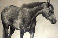 Horse I / Equus ferus callabus / 2009 / 100 x 150 cm / Pencil on panel